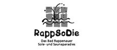 RappSoDie Bad Rappenau Solebad GmbH und Co. KG - Website, SEO, Social Media